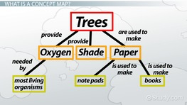 Concept Map: Definition & Examples