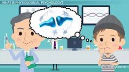 Physiological Psychology: Definition & Principles