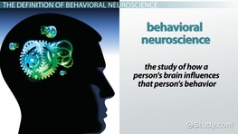 What Is Behavioral Neuroscience?
