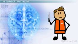 The Effect of Trait Theory on Public Policies