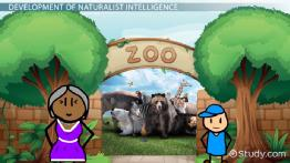 Naturalist Intelligence: Definition & Explanation