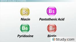 Niacin, B5, B6 & B7: Water-Soluble Vitamin Deficiency & Toxicity