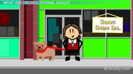 What Are Organizational Goals? - Definition, Types & Examples