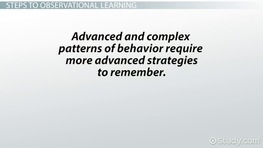 Observational Learning: Definition, Theory & Examples