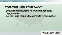 Office of Juvenile Justice & Delinquency Prevention (OJJDP): History, Role & Purpose