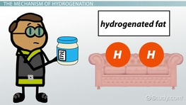 What is Hydrogenation? - Process & Reaction