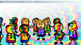 Patterns of Hallucinogenic Drug Abuse