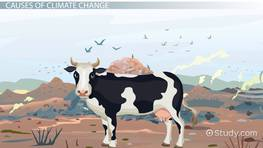 Anthropogenic Climate Change: Definition & Factors