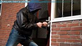 Property Crime: Definition, Types & Statistics