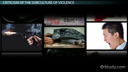 Subculture of Violence Theory