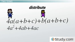 Distribution of More Than One Term in Algebra