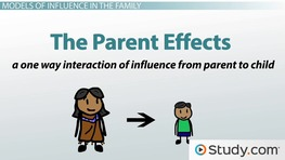 an explanation of the impact of parents and family on cognitive development and social theory of lea Family environment and social development in gifted students broadly defined, social competence refers to the social, emotional, and cognitive skills the impact of family environment on social competence.