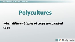 Types of Agriculture: Industrialized and Subsistence Agriculture