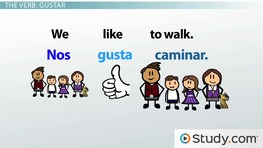 Gustar: Conjugation and Example Sentences