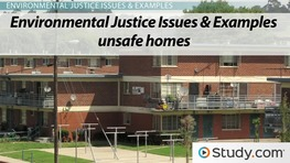 What is Environmental Justice? - Definition, Principles, Examples & Issues