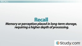 Recognition vs Recall: Definitions & Differences