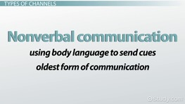 Communication Channels in an Organization: Types, Definition & Examples