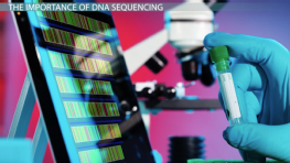 DNA Sequencing and the Human Genome