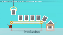 Functional Areas of a Business: Definition & Groups
