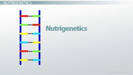 Nutritional Genomics: Nutrigenomics & Nutrigenetics