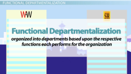 Departmentalization in Management: Definition, Types & Advantages