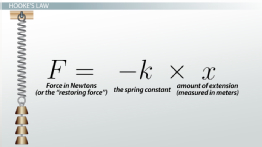 Hooke's Law & the Spring Constant: Definition & Equation