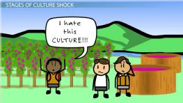 Culture Shock: Definition, Stages & Examples