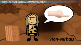 Non-Verbal Communication: Examples, Types & Definition
