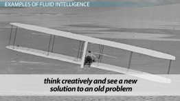 Fluid Intelligence: Definition & Examples