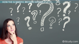 What is the Scientific Method? - Steps and Process