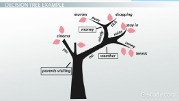 What Is a Decision Tree? - Examples, Advantages & Role in Management