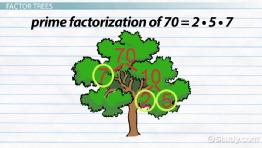 What is Prime Factorization? - Definition & Examples