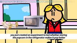 Experimental Group: Definition & Explanation
