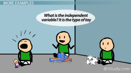 What is an Independent Variable? - Definition & Explanation