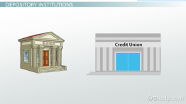 Types of Financial Institutions: Definition, Examples & Roles