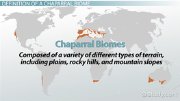 Chaparral Biome: Definition & Locations