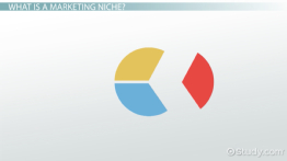 Marketing Niche: Examples & Overview