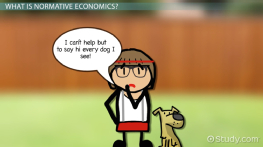 Normative Economics: Definition & Examples