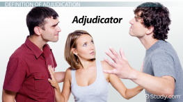 What is Adjudication? - Definition, Process & Services