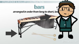 Xylophone: History & Facts