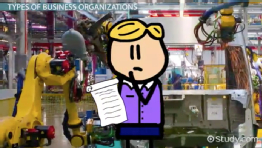 Types of Business Organizations: Advantages & Disadvantages