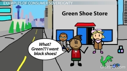 Consumer Sovereignty: Definition & Limitations