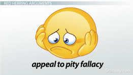 What are some ways to avoid fallacies when writing an essay?