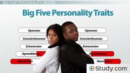 What Are Personality Traits? - Characteristics, Definition & Five Big Traits