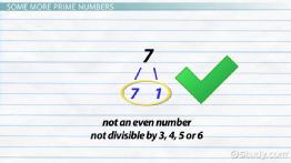 What Are Prime Numbers? - Definition & Examples