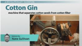 The Cotton Gin: Definition, History & Impact