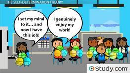 Self-determination & Cognitive Evaluation Theories: Employee Motivation