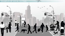 Social Systems: Definition & Theory