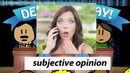 Spanish Practice Activity: Listening to a Political Debate