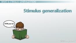 Stimulus Generalization: Definition & Examples